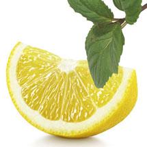 Zitrone und Minze